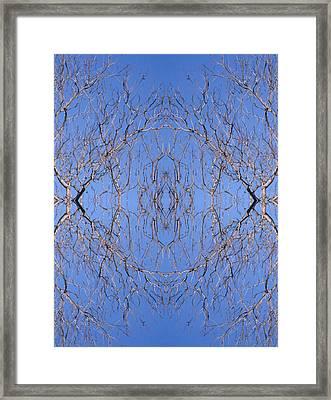 Kaleidoscope - Trees 2-1 Framed Print