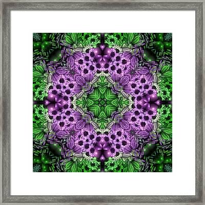 Kaleidoscopic 2 Framed Print by Gabour Demans