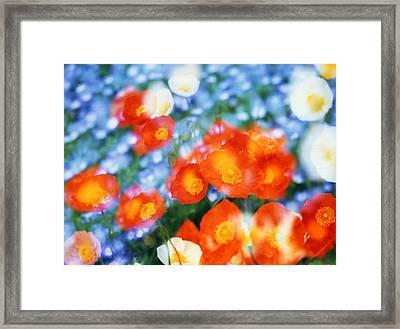Kaleidoscopic Flowers In Blues, Orange Framed Print