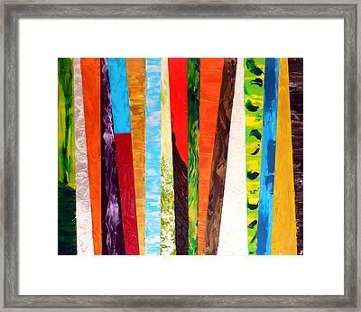Kaleidoscopic Framed Print