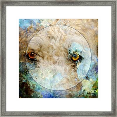 Kaliedoscope Eyes Framed Print by Judy Wood