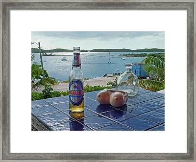 Kalik Beer Bottle At The Front Porch Framed Print