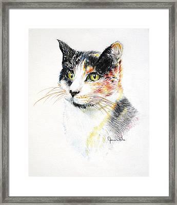 Kallie Framed Print