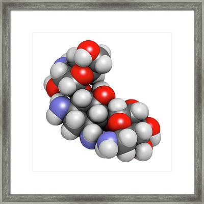 Kanamycin Antibiotic Drug Molecule Framed Print by Molekuul