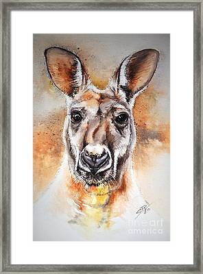 Kangaroo Big Red Framed Print