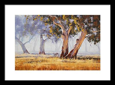 Trees Framed Prints