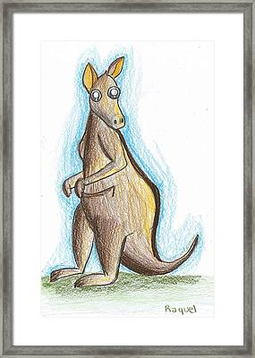 Kangaroo From Down Under Framed Print by Raquel Chaupiz