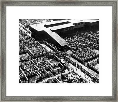 Kansas City Stock Yard Vintage Framed Print