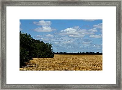 Kansas Fields Framed Print