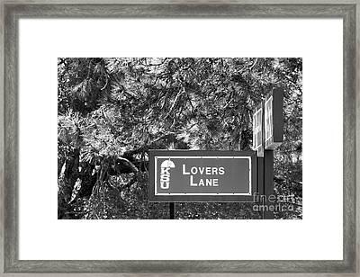Kansas State University Lovers Lane Framed Print