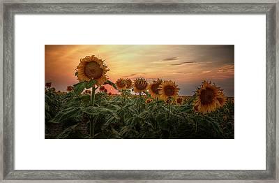 Kansas Van Gogh Framed Print