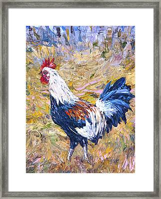 Kapaa Rooster Framed Print