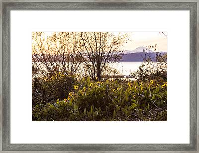 Framed Print featuring the photograph Karel's View by Jan Davies