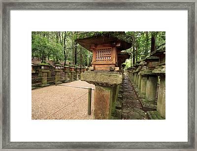 Kasuga Taisha Shrine In Nara, Japan Framed Print by Paul Dymond