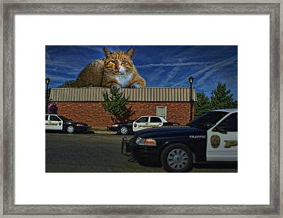 Katastrophic Framed Print by Tim McCullough