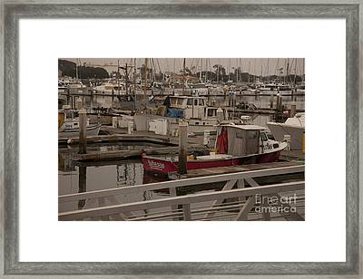Katherine Framed Print by Amanda Barcon