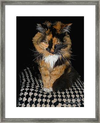 Katie Girl Framed Print