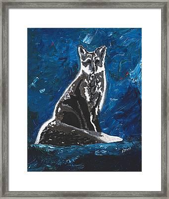 Kat's Fox Framed Print