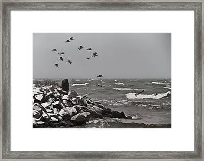 Kattegat Framed Print by Odd Jeppesen