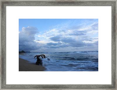 Kauai Blues 1 Framed Print by Ange Sylvestri
