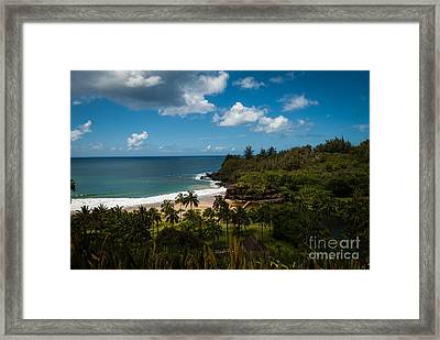 Kauai South Shore Jungle Framed Print