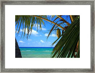 Kawela Bay Framed Print by Saya Studios
