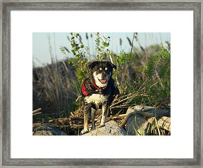 Kayaker's Best Friend Framed Print by James Peterson