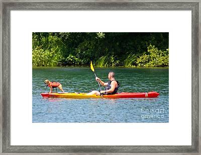 Kayaking Buddies Framed Print