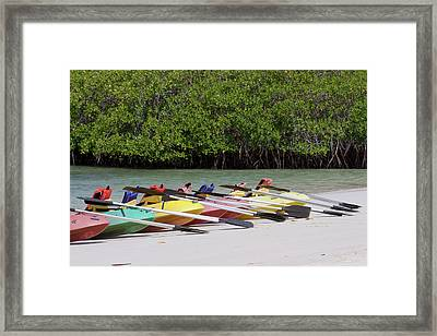 Kayaks At Tortuga Bay, Santa Cruz Framed Print by Diane Johnson