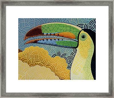 Keel-billed Toucan Framed Print by Nathan Miller