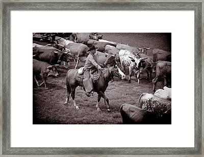 Keep Em Moving Framed Print by Toni Hopper