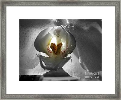 Keeper Of The Light Bw Framed Print