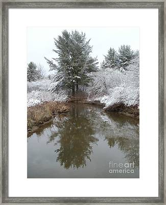Keeper Of The Stream Framed Print