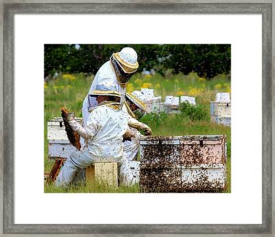 Keepers Of The Bee Framed Print