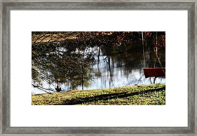 Keeping On The Sunnyside  Framed Print by Jinx Farmer