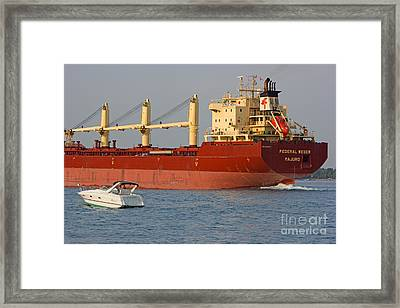 Keeping Pace 3 Framed Print by Mary Bedy