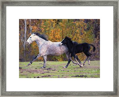 Keeping Up Framed Print by Mike Dawson