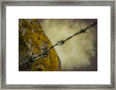 Keeping You Out Or Keeping Me In Framed Print by Clare Bambers
