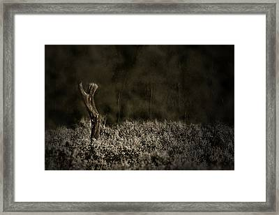 Keeping Yours Framed Print