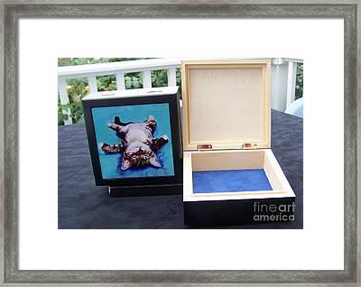 Keepsake Box Framed Print by Pat Saunders-White