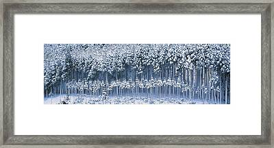 Keihoku-cho Kyoto Japan Framed Print by Panoramic Images