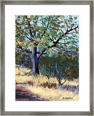 Kelly Ridge Trail Framed Print