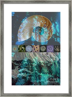 Kelp Forest Framed Print