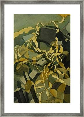 Kelp-on-the-rocks Framed Print by Anne Havard