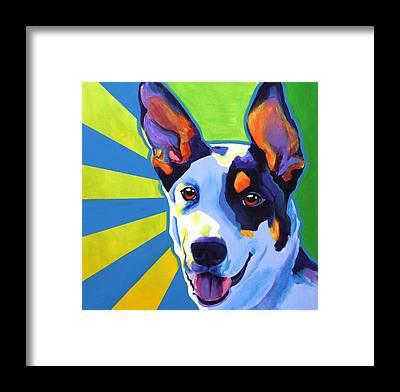 Funny Dog Framed Prints