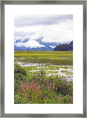 Kenai Lake Framed Print by Saya Studios