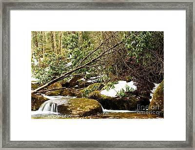 Kens Creek Spring Framed Print by Thomas R Fletcher
