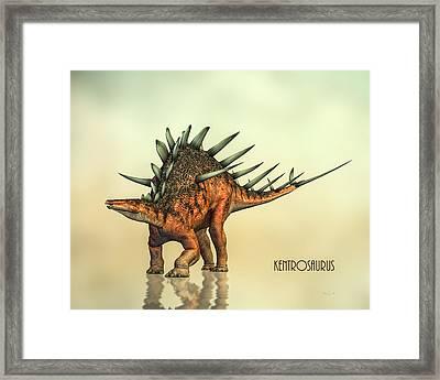 Kentrosaurus Dinosaur Framed Print by Bob Orsillo