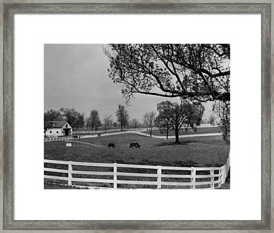 Kentucky Bluegrass Horse Racing Farm Framed Print by Retro Images Archive