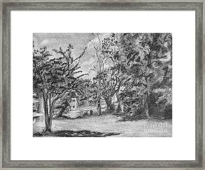 Kentucky Trees Framed Print